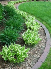 Landscaping Front Yard Ideas to Beautify Your Garden Design 15