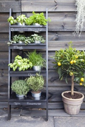 Stunning DIY Vertical Garden Design Ideas 09