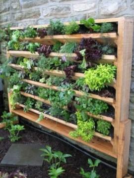 Stunning DIY Vertical Garden Design Ideas 17