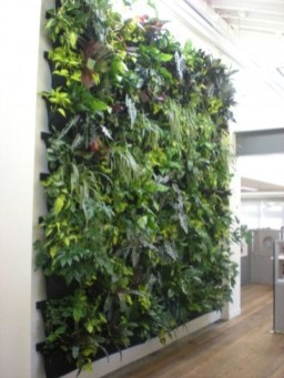 Stunning DIY Vertical Garden Design Ideas 42