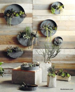 Basic Exterior Wall Into an Elegant Vertical Garden to Perfect Your Garden 22