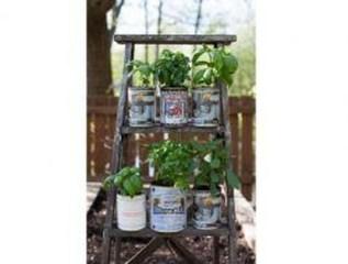 Cheap DIY Garden Ideas Everyone Can Do It 04