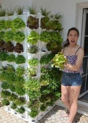 Cheap DIY Garden Ideas Everyone Can Do It 09