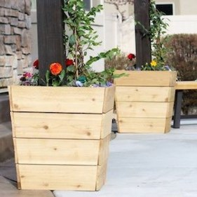 Cheap DIY Garden Ideas Everyone Can Do It 44