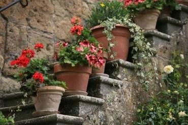 Cheap DIY Garden Ideas Everyone Can Do It 51