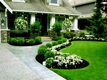 Gardening Tips- Maintenance Landscaping Front yard 01