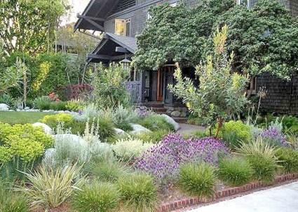 Gardening Tips- Maintenance Landscaping Front yard 02