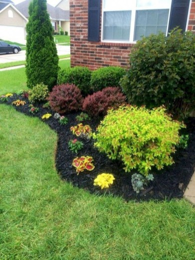 Gardening Tips- Maintenance Landscaping Front yard 05