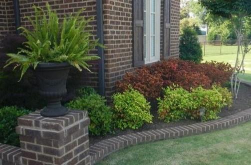Gardening Tips- Maintenance Landscaping Front yard 10