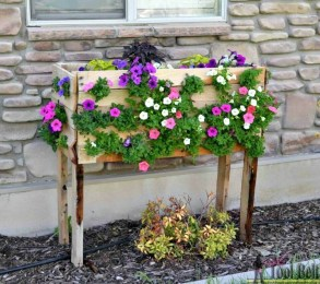 Inexpensive DIY Planter with Pallet 02