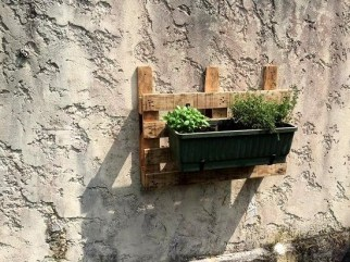 Inexpensive DIY Planter with Pallet 29
