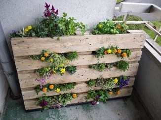 Inexpensive DIY Planter with Pallet 52