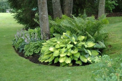Most Amazing Front Yard and Backyard Landscaping Ideas 39