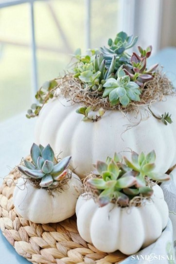 Best Fall crafts Projects and Design to Welcome The Fall This Year 49
