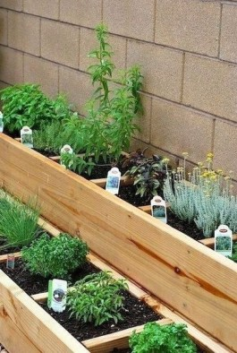 Smart DIY Backyard Ideas and Projects 36