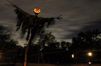 Best DIY Halloween Decorations To Perfect Your Outdoor Design 16