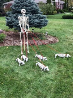DIY Creepy Halloween Decorating Ideas Outdoors 21
