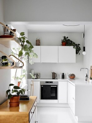 Modern Household Kitchen For Cooking More Exciting 37