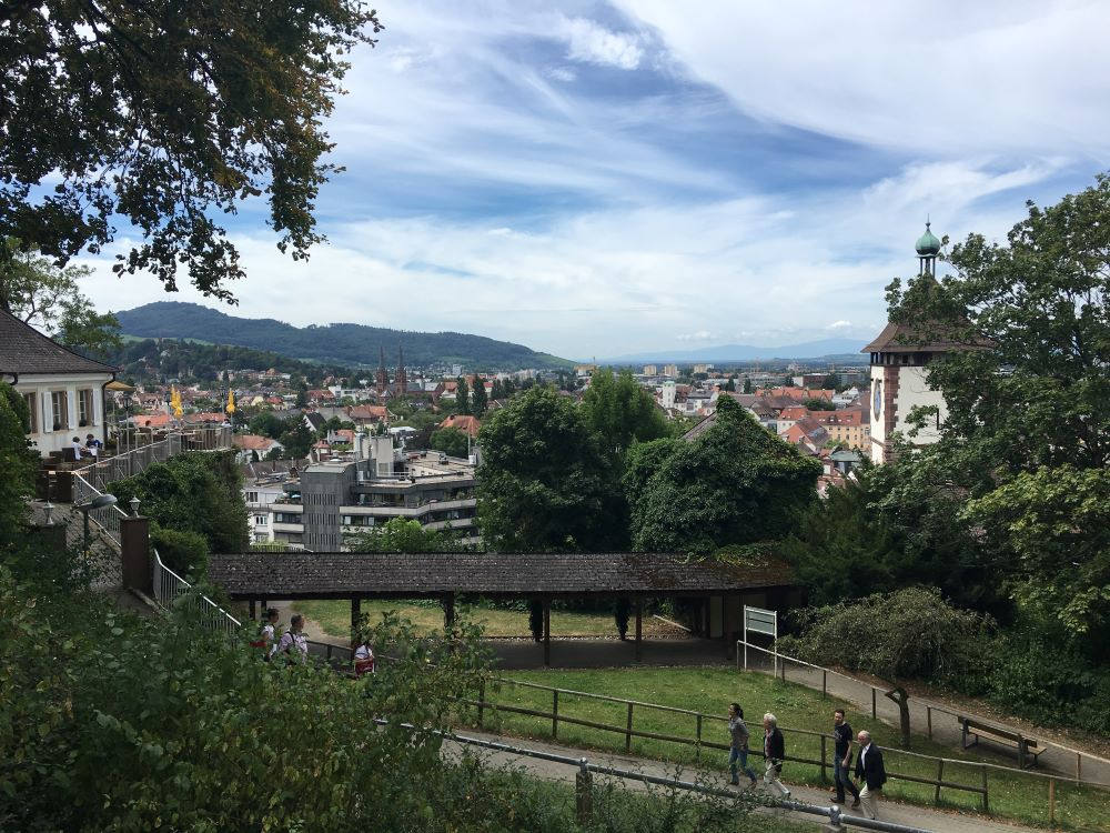 A photo of the Old Town in Freiburg, Germany. It shows the tops of builds and greenery.