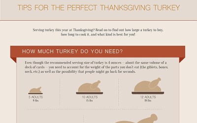 Your Turkey Guide