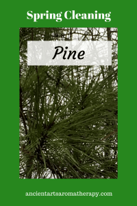 Spring Cleaning with Pine
