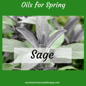 Sage Spring cleaning