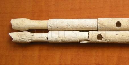 Εικ. 27β. Αυλός Ποσειδωνίας: τα επιστόμια.