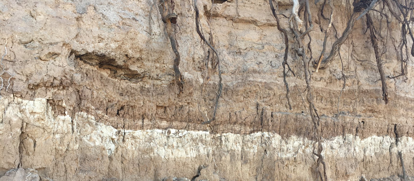 Alluvial clay deposits