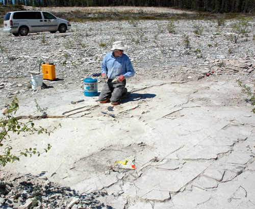 This is me collecting fossils in the summer of 2007.  To find fossils at this site, one has to crawl around for hours, cleaning and splitting rock.  After a day or so, my knees are bruised and in constant pain.