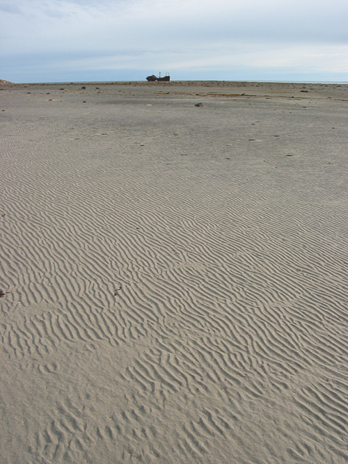At low tide, Bird Cove becomes an immense sandy tidal flat, with the Ithica toward its seaward edge.