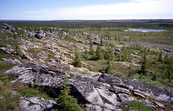 West of the Churchill River, one can stand on top of one quartzite ridge and look across to the next one.  In the Late Ordovician Period, this low area was a channel between tropical islands.