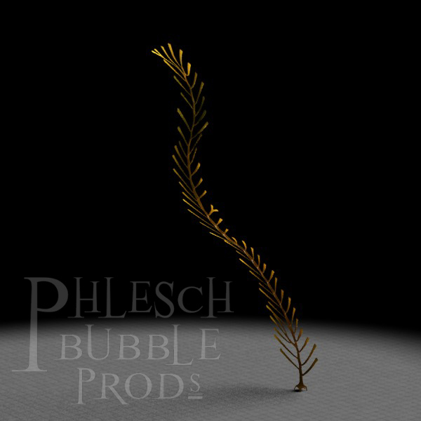 This seaweed reconstruction is based on the Ordovician genus Winnipegia.