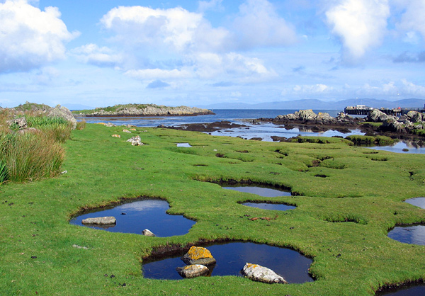 Ponds above the shore, Island of Colonsay, Scotland