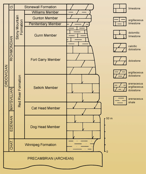 Ordovician stratigraphy in the vicinity of Winnipeg, showing stratigraphic positions of field trip stops. 1, Gillis Quarries, Garson; 2, Mowat Farm Quarry; 3, Stony Mountain quarries; 4, Stonewall Quarry Park. CHAT. = Chatfieldian Stage; G. = Gamachian Stage (after Elias, 1981, fig. 2).