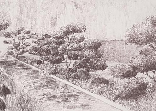 London Garden drawing