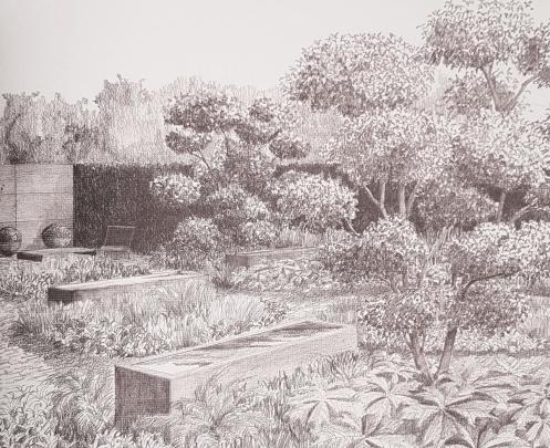London Garden development garden