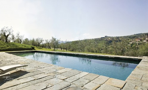 provence-nature-outdoor-pool-with-limestone-pool-coping-