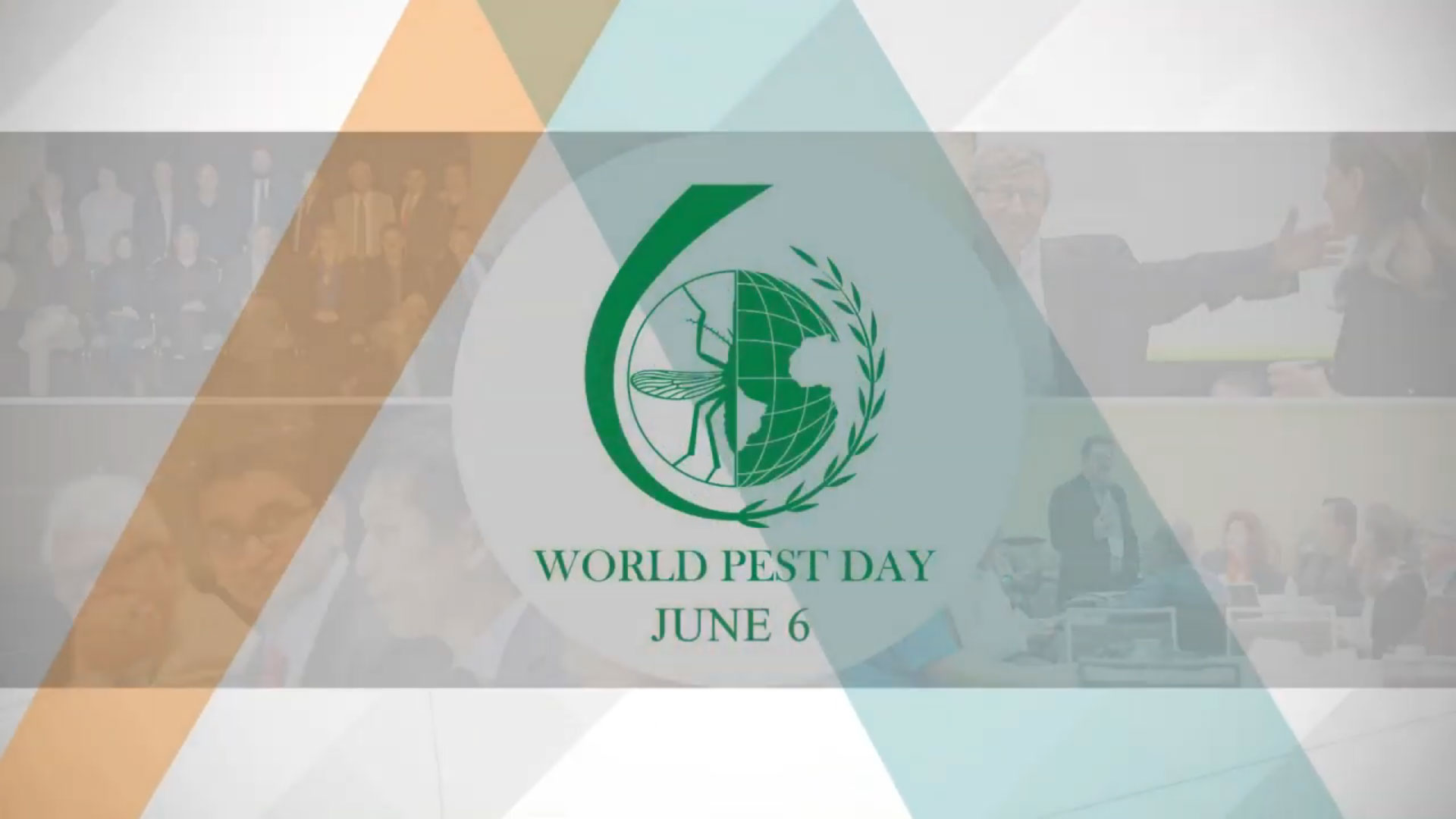 World Pest Day – Junio 6