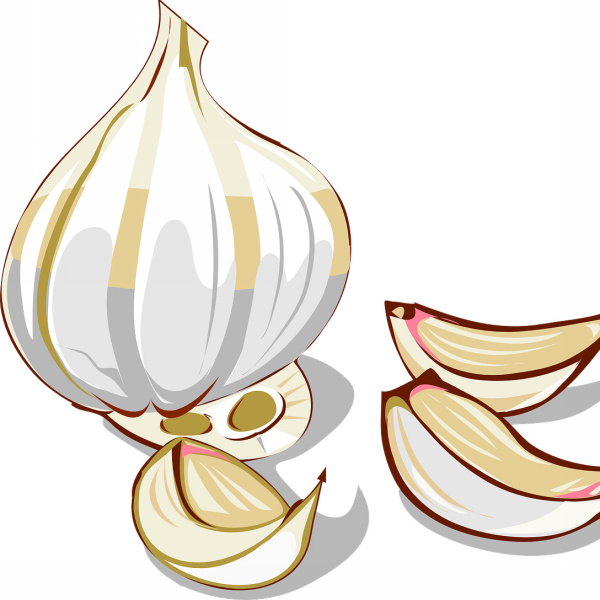 Garlic Free logo