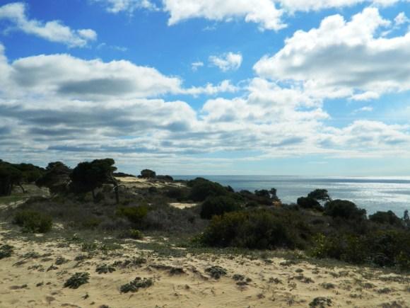 Il Parco Naturale Doñana prima lungo l'Atlantico.