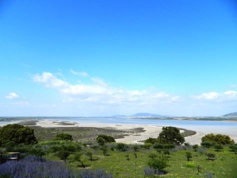 Cosa vedere a Fuente de Piedra - paesaggio