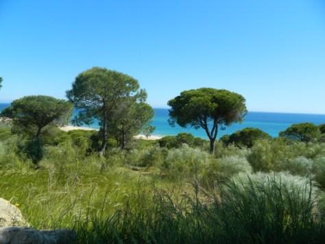 la-brena_cadice_andalusia_andalucia_cosa-vedere_consigli_tour