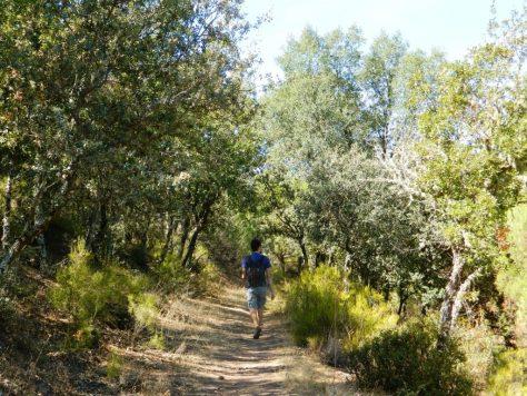 despenaperros_cosa_vedere_jaen_andalusia_trekking