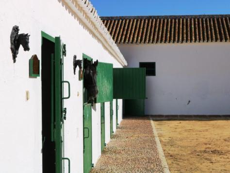 olio_turismo_siviglia_hacienda_stalle