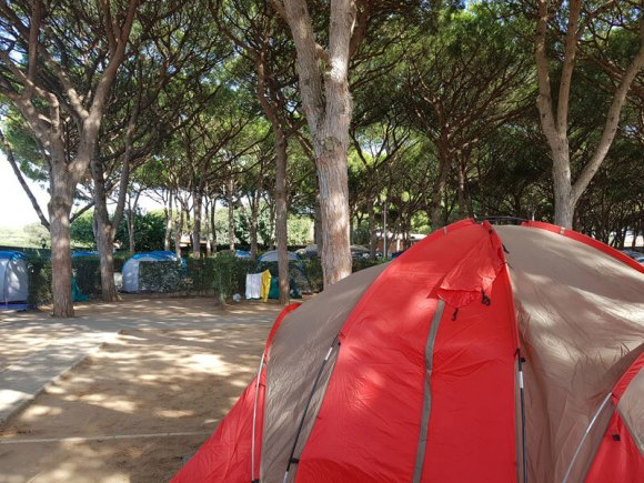 campeggio_andalusia_canos
