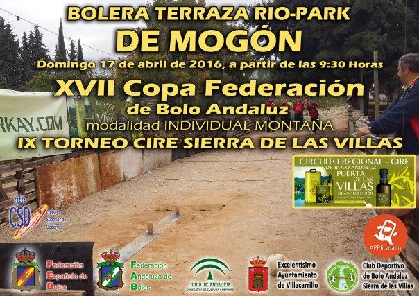 Cartel XVII Copa Federación copia red
