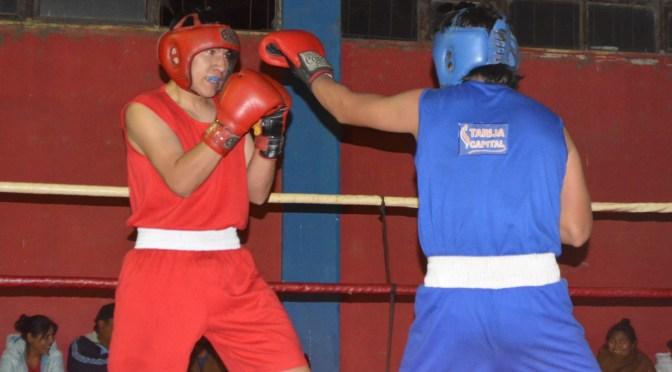 El boxeo tarijeño planifica un torneo virtual relepampago