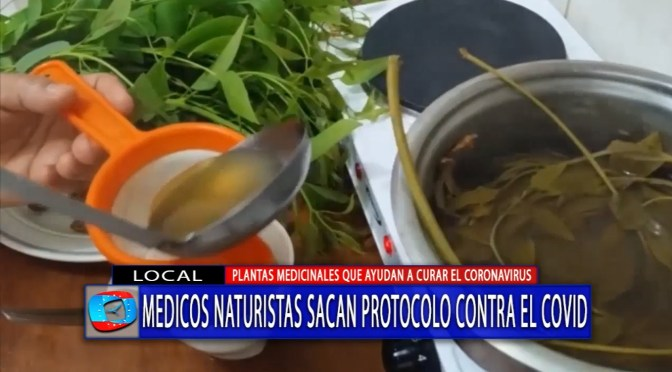 Emiten protocolo para el uso de medicina natural contra el covid 19 en Tarija