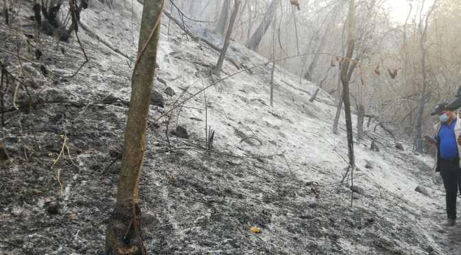El fuego amenaza el Aguaragüe: En Yacuiba incendio afectó alrededor de 150 hectáreas