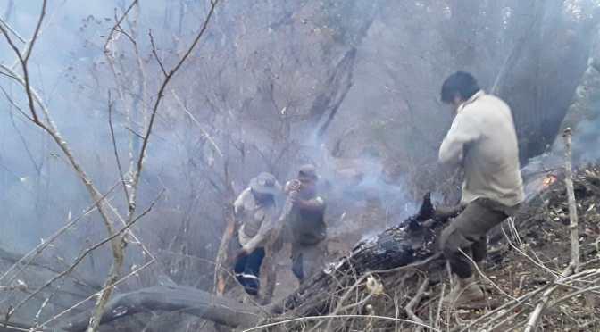 Incendios en el Parque Nacional Aguaragüe bajo control y en etapa de liquidación